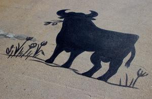 spain-bull-800
