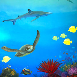 5x8ft mural of great barrier reef scene